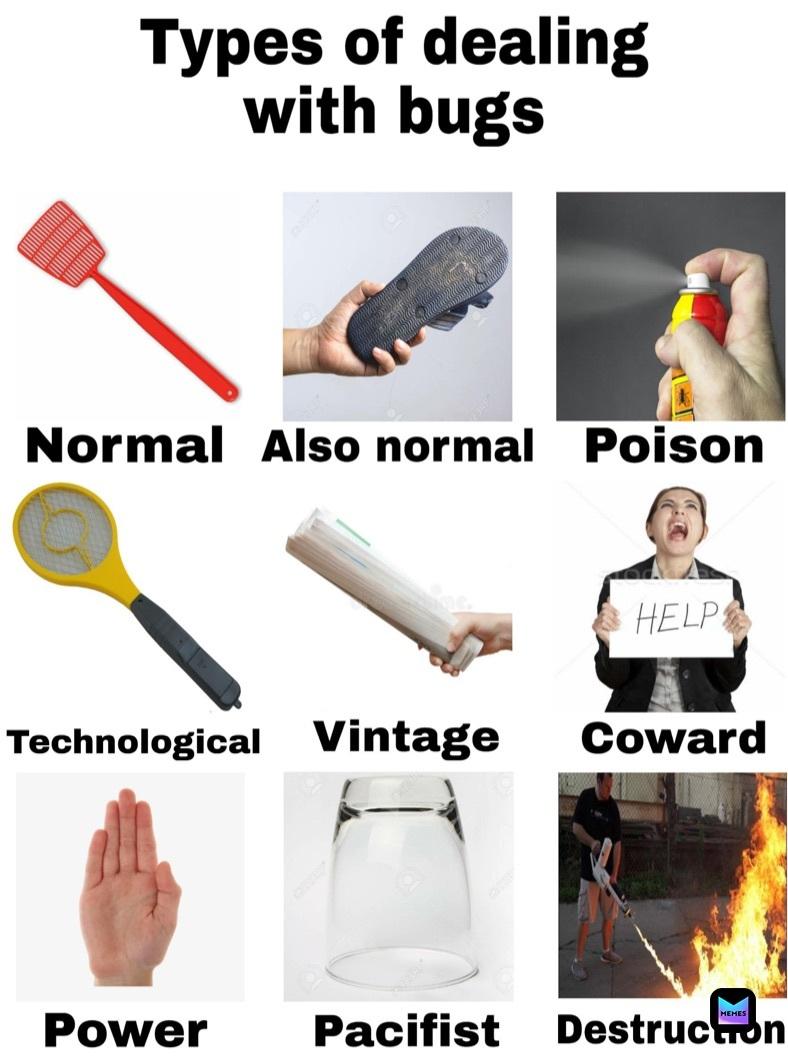 I prefer destruction if I do say so myself - meme