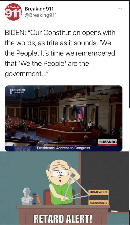 Dongs in a constitution - meme