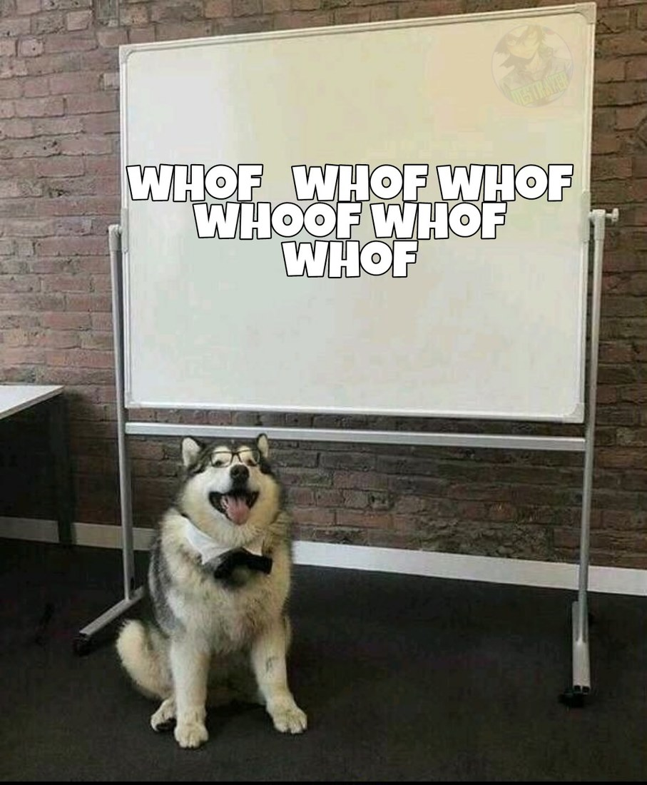 tradução para los que no hablan perro: ser ateo no te hace inteligente y ser creyente no te hace fanático - meme
