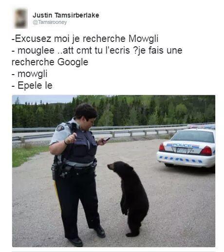 Mowgli ! - meme