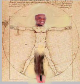 Homem vitruviteuanus de Leandro e Leonardo Di Caprio - meme