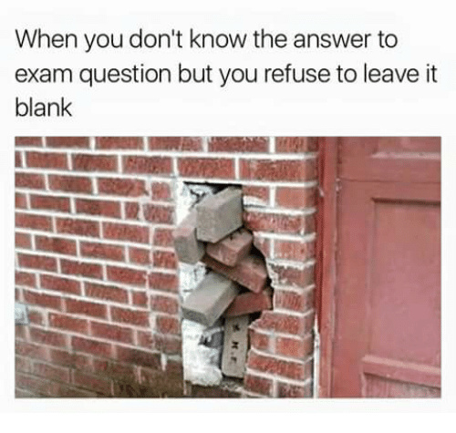 When you don't know the answer to the exam question but you refuse to leave it blank - meme