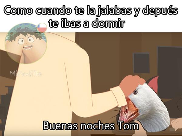 Buenas noches Gansito - meme
