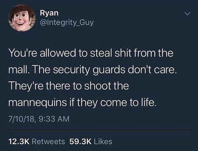 Security guards are there to shoot the mannequins if they come alive - meme