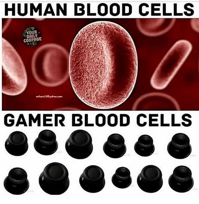 Gamersriseup - meme