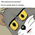 Ce n'est pas moi qui ai fait ce meme, je l'ai juste traduit