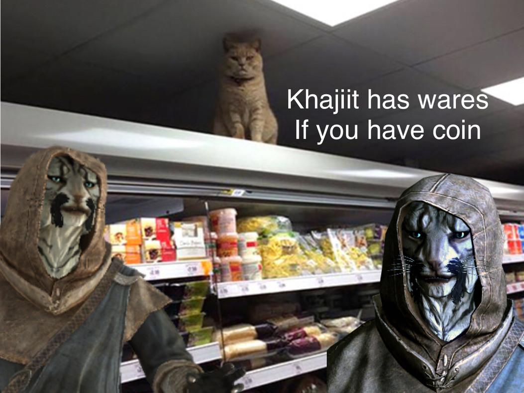 Khajiit is all - meme