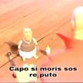 larinoamerica like:
