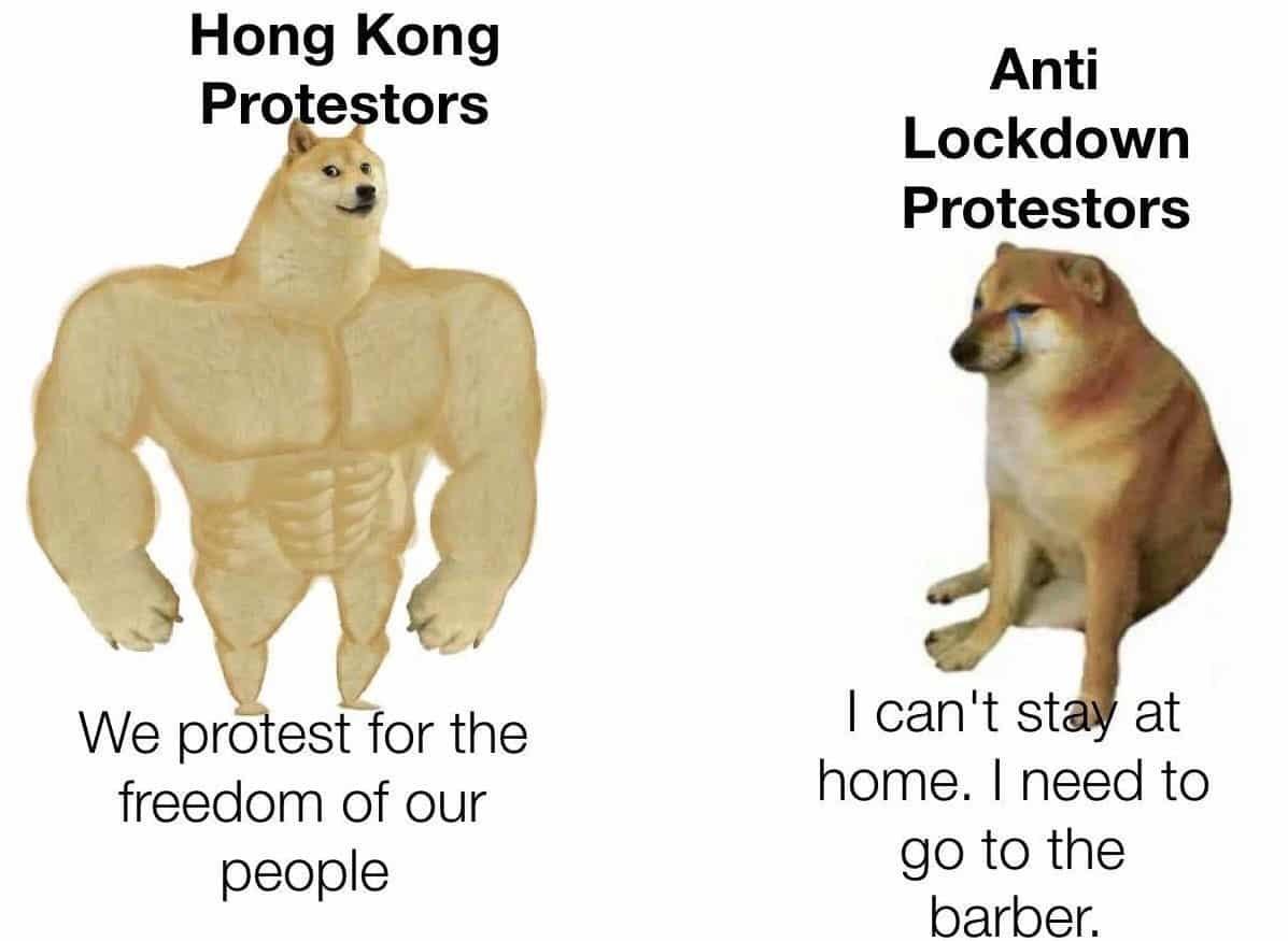 just facts - meme
