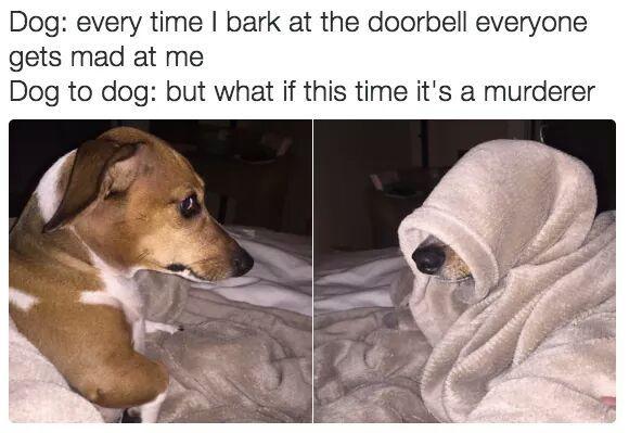 Dogebell - meme