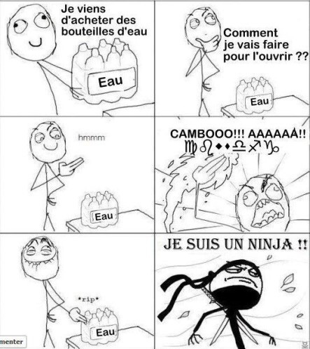 ninja - meme