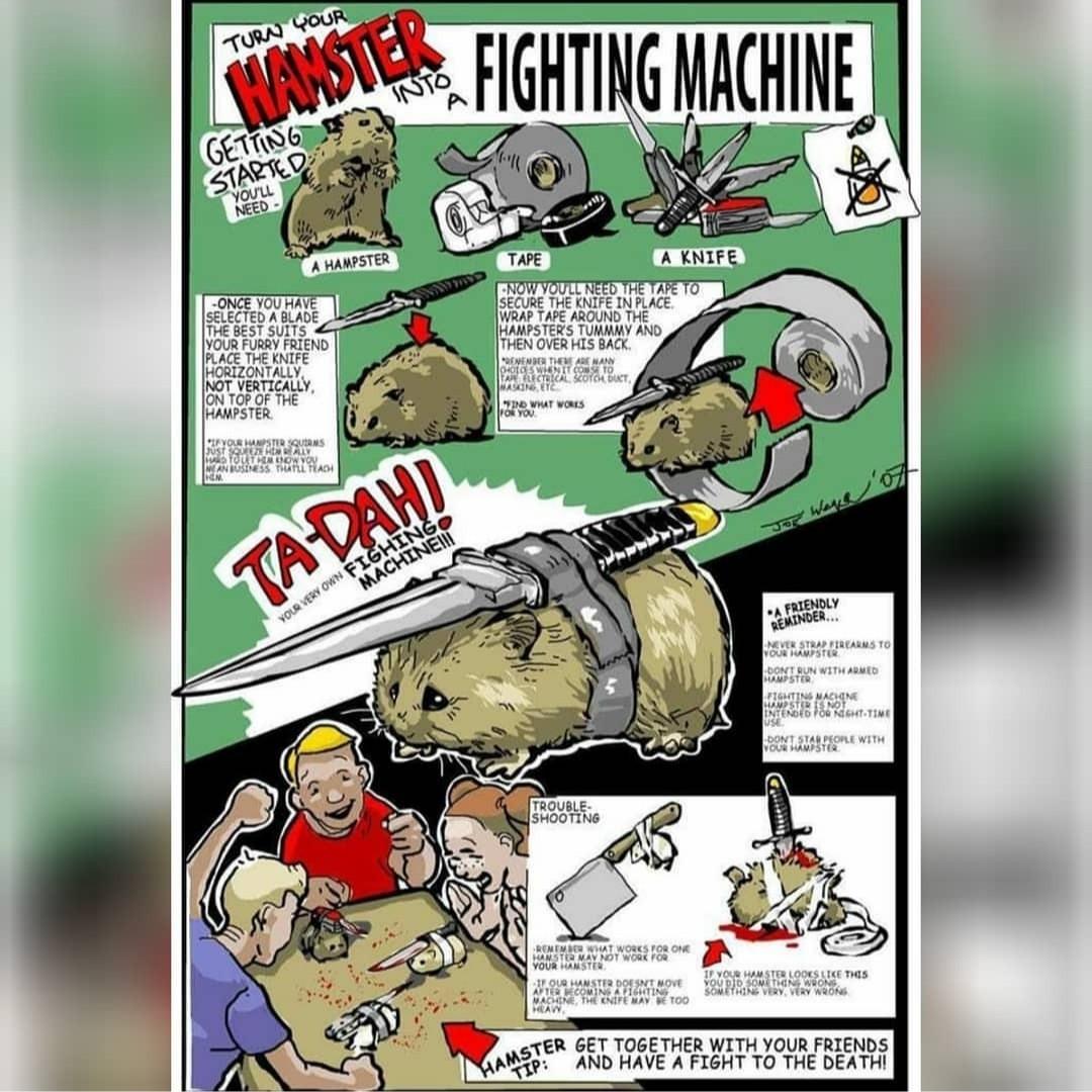 Transforma tu hámster en una maquina de luchar, y lucha contra los de tus amigos :D - meme