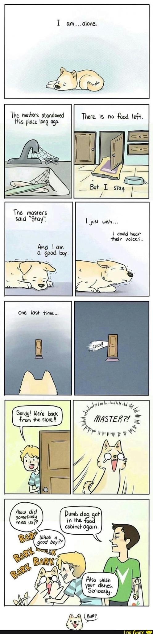 Hail dogs! - meme