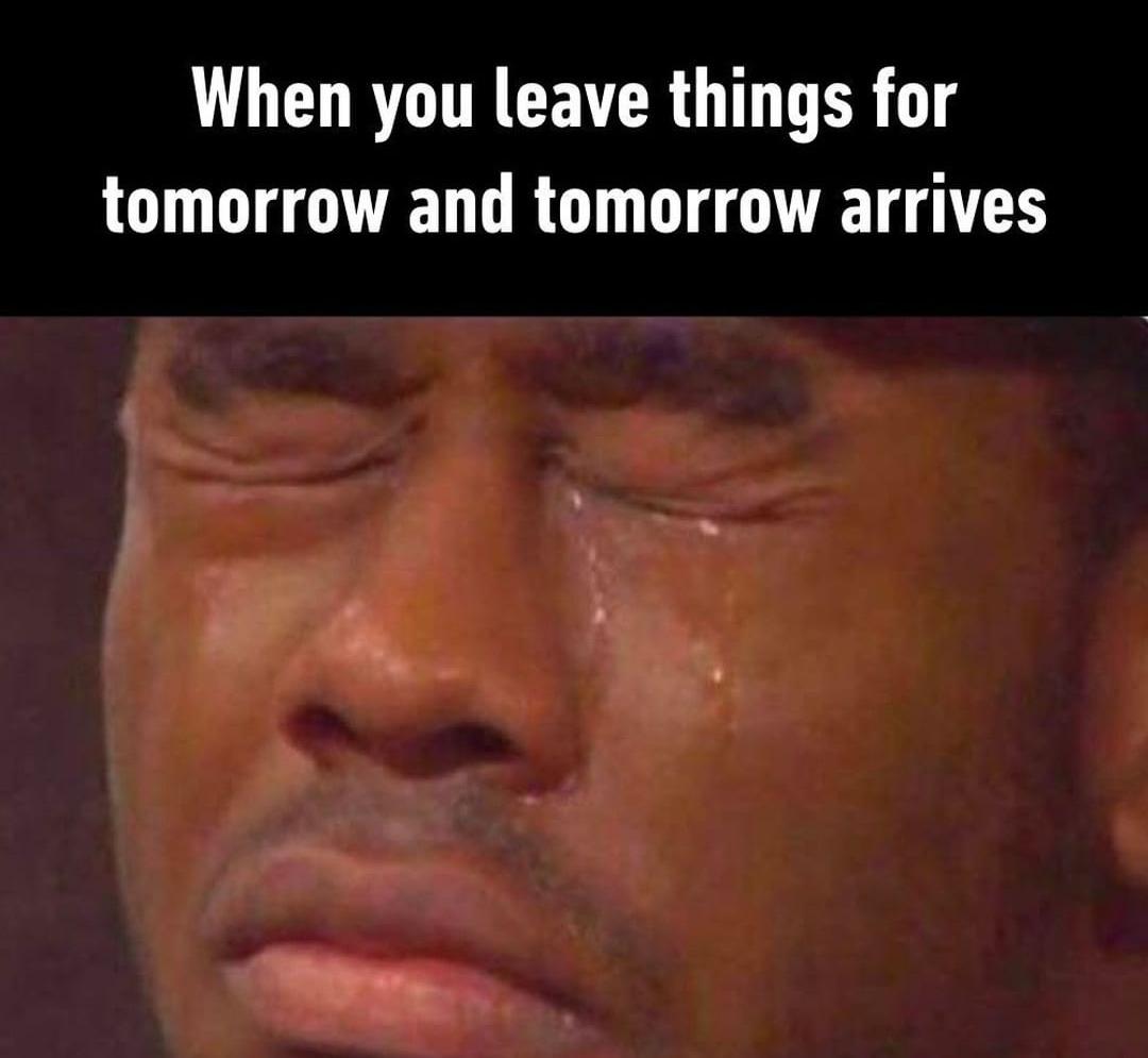 and just postpone again until tomorrow - meme