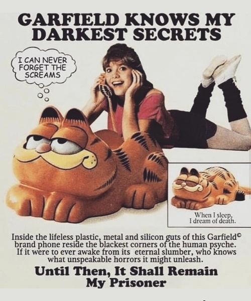 Garfield - meme