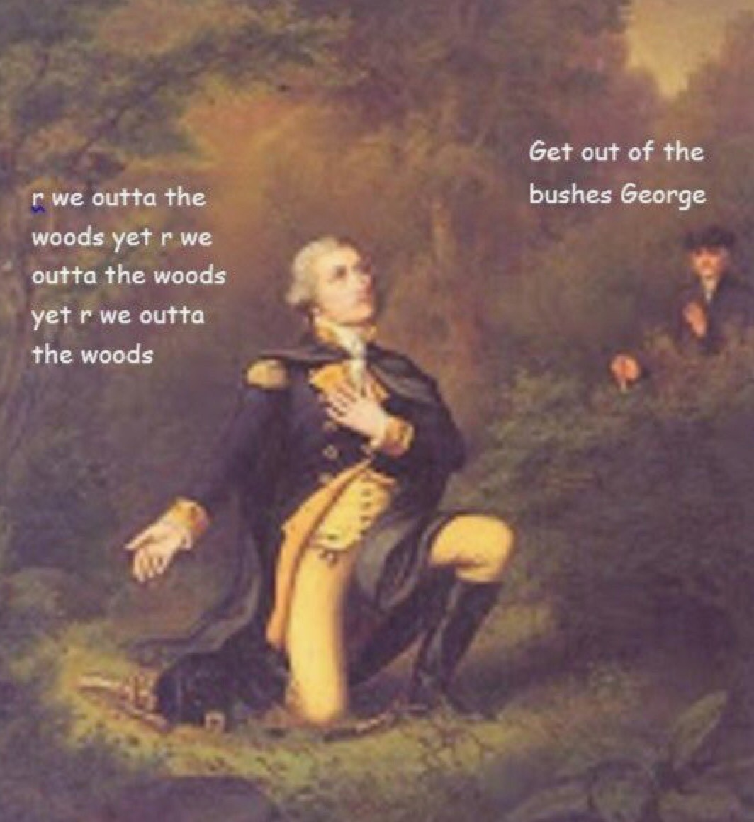 George Washington - meme