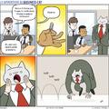 Cat Day!