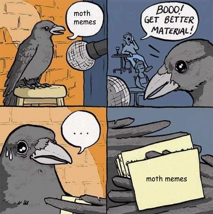 moths - meme