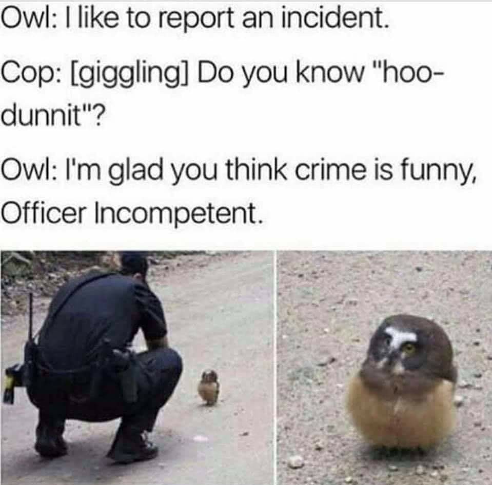 Hoo - meme