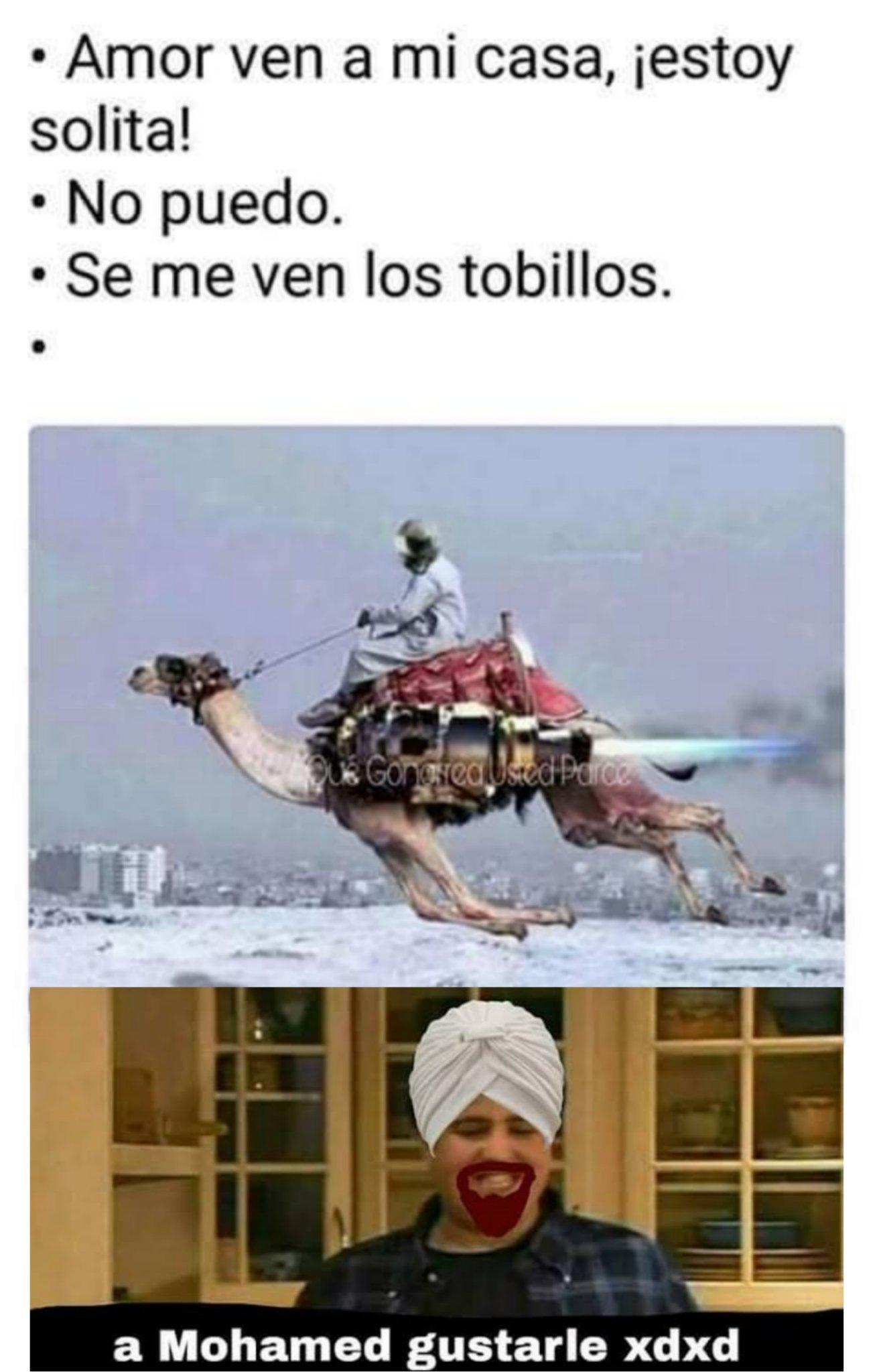 joshy - meme