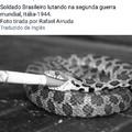 Cobras fumantes