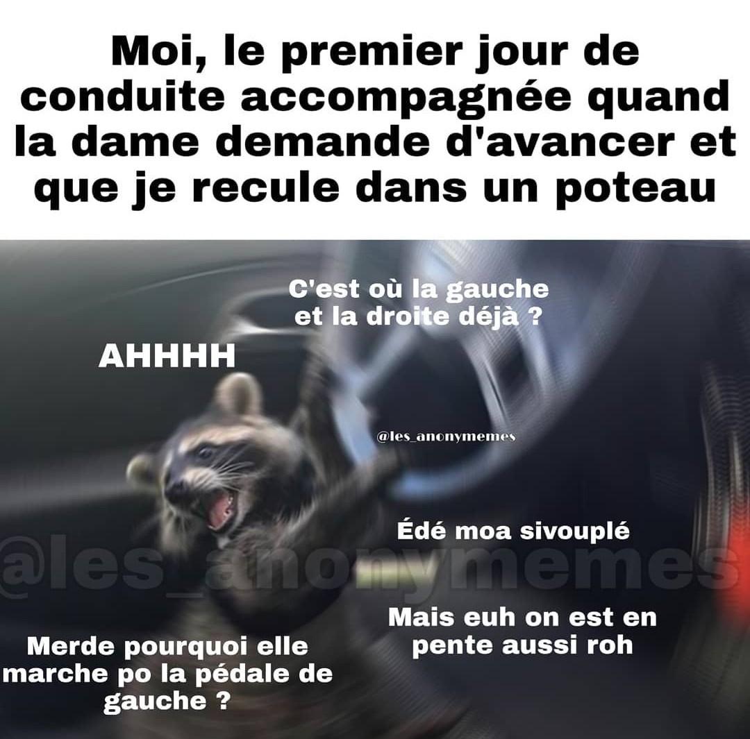 La voiture - meme