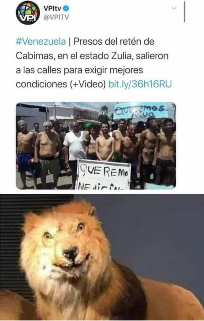 """La carcel de los sueños de un preso en un pais normal....""""latinoamerica no aplica"""" - meme"""