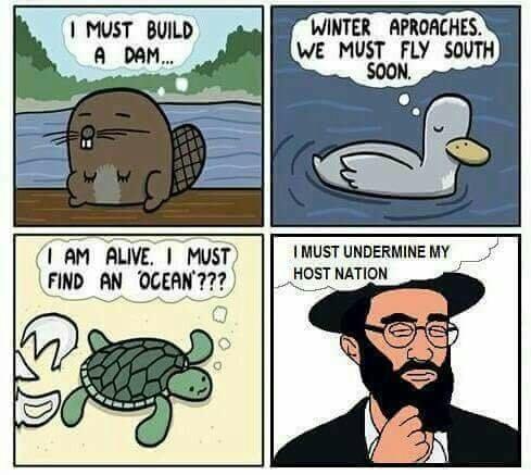 Filthy jews - meme
