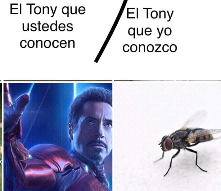 Ant-Tony - meme