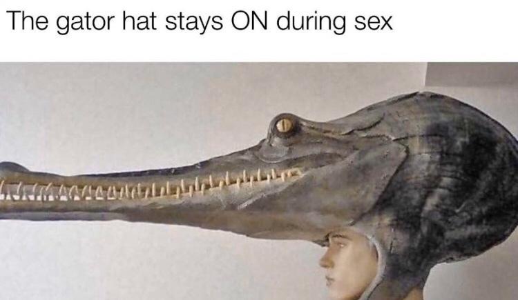 hopefully you wont mind - meme
