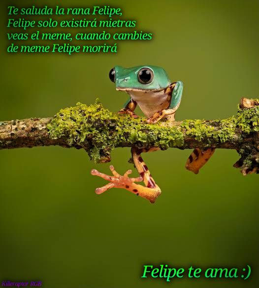 Felipe :D - meme