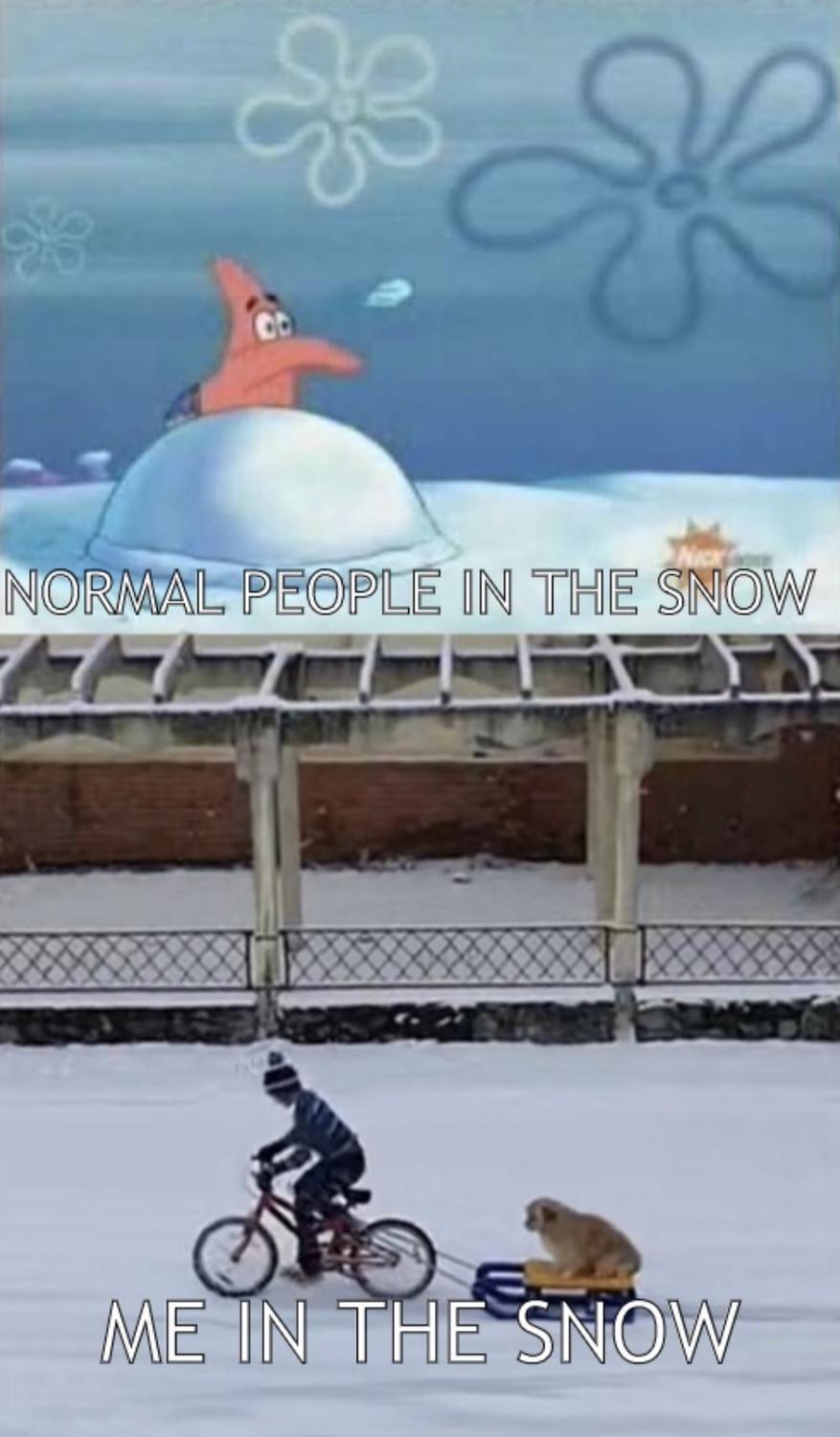 Snow - meme