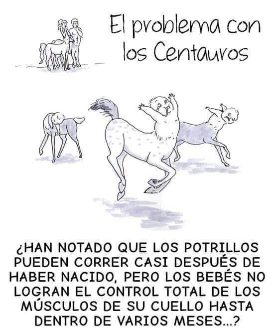 Pobres centauros - meme