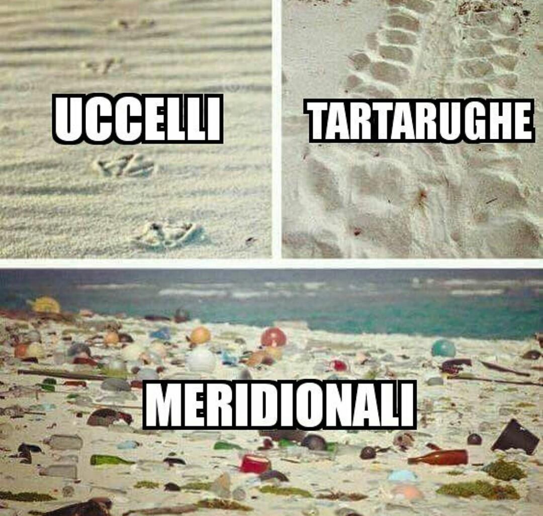 Spero vi piace,l'ultima foto l'ho scattata io AHAHAH evviva la Sicilia - meme