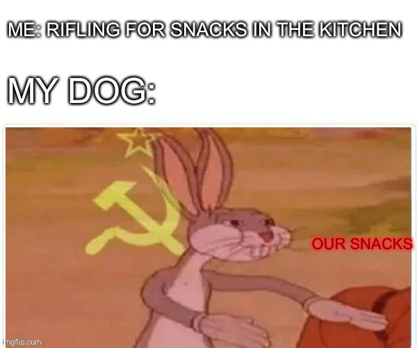 dog food - meme