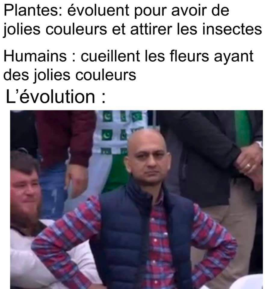 Bye bye les titres - meme