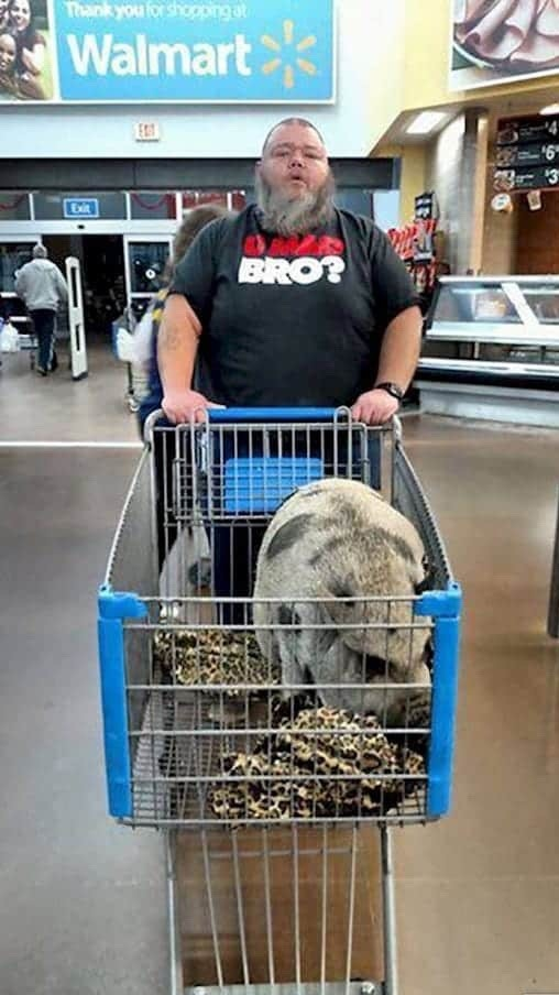 Walmart - Is buying that pig or bringing it to shop with him? - meme