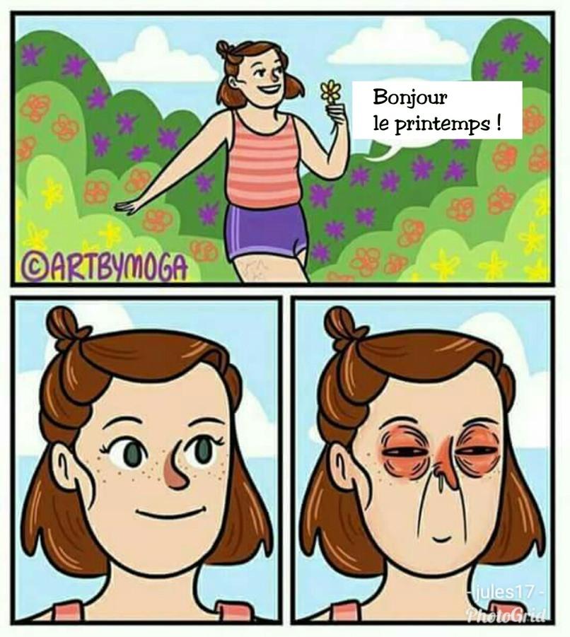 Le pollen - meme