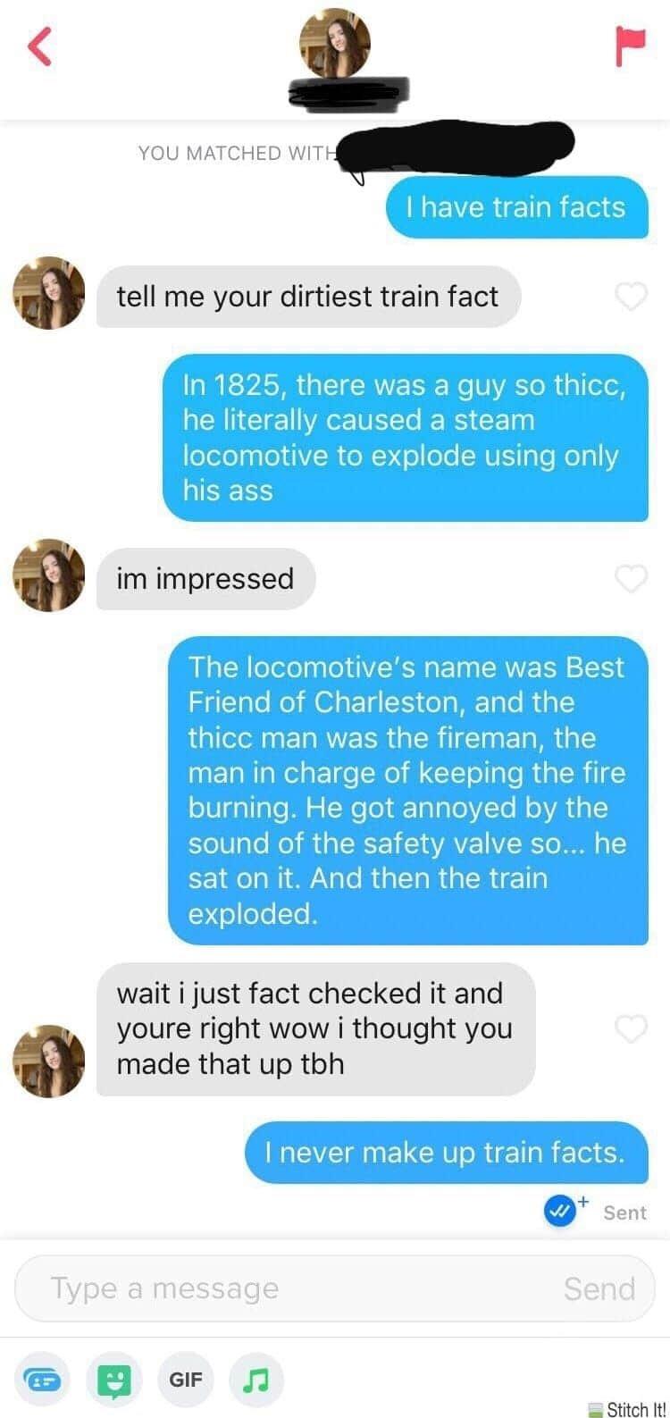 train facts - meme