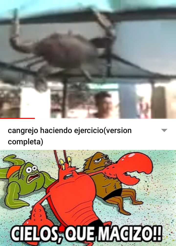 el video mas incleible del mundo - meme