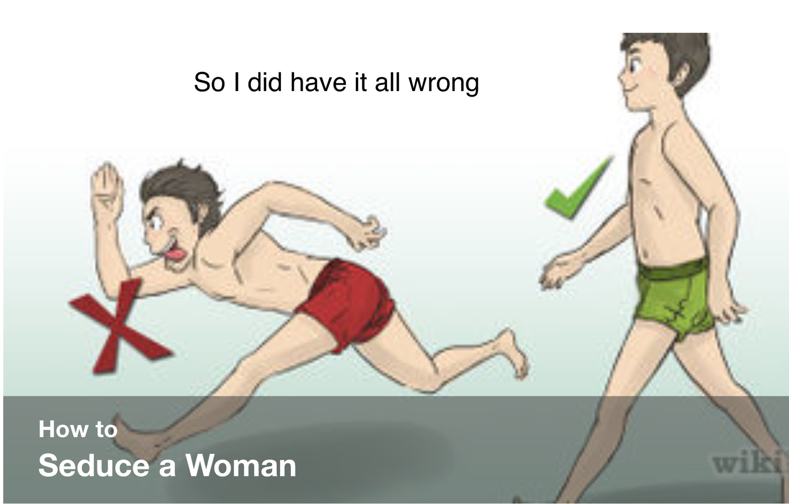 How to not seduce a woman - meme
