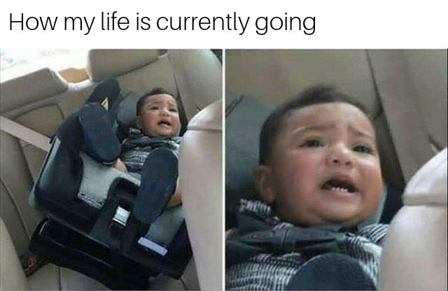 How's life going? - meme