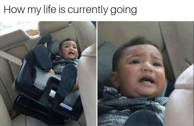 How's life going? - meme