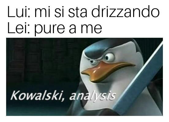 Kovalski anal by BiMboTerrOriSta666 - meme
