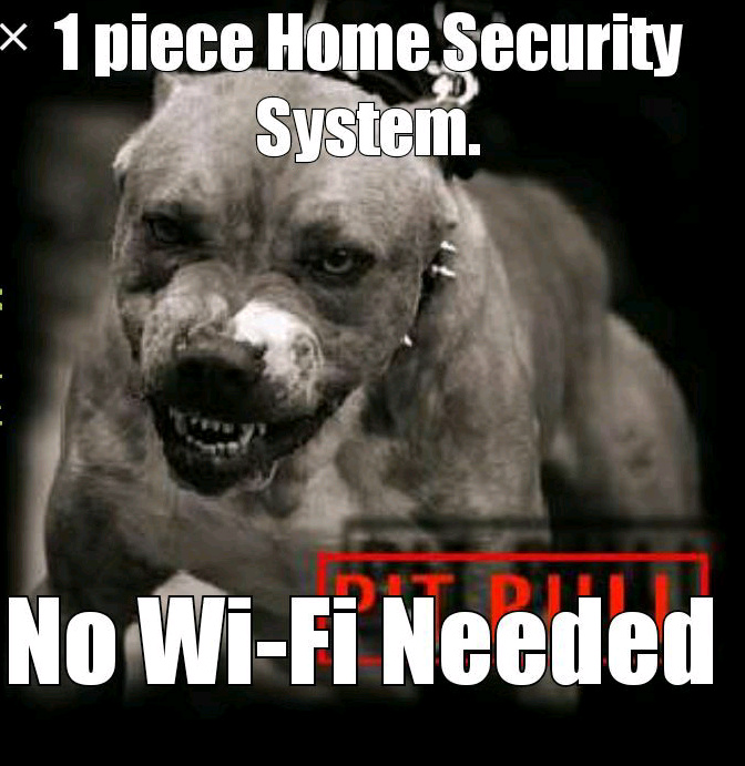 Real security - meme