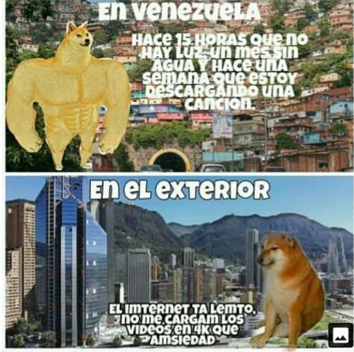 Quien es venezolano o venezolana sobreviviente - meme