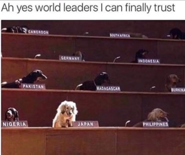 Insert Trustworthy - meme