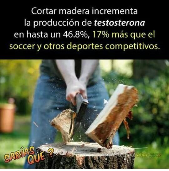 A cortar madera - meme