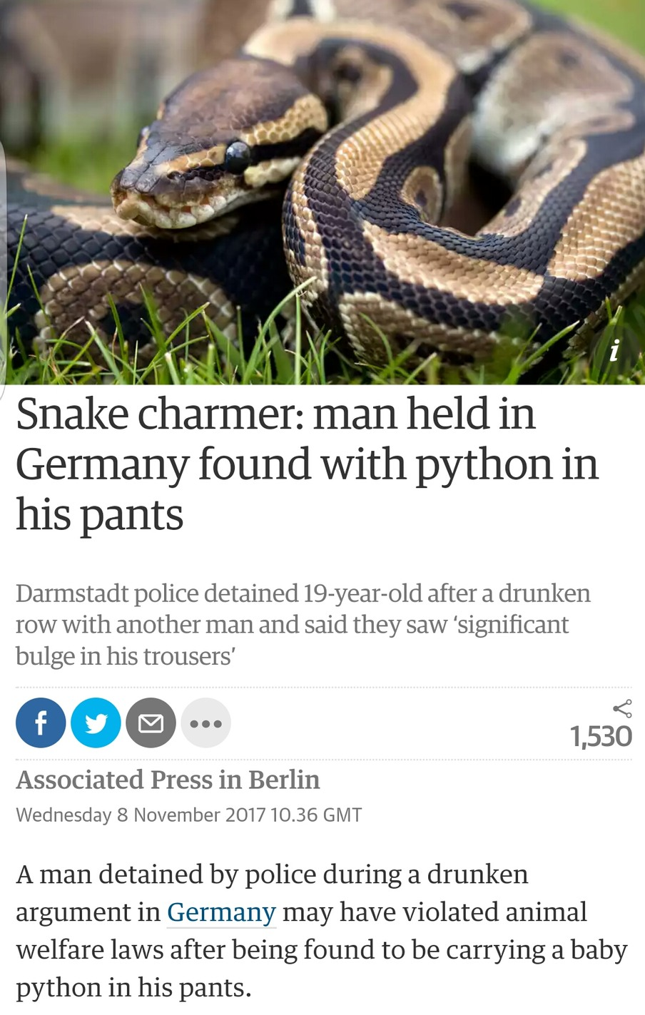 There's a snake in my pants - meme