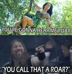 Amon amarth roaring rules for bitches - meme